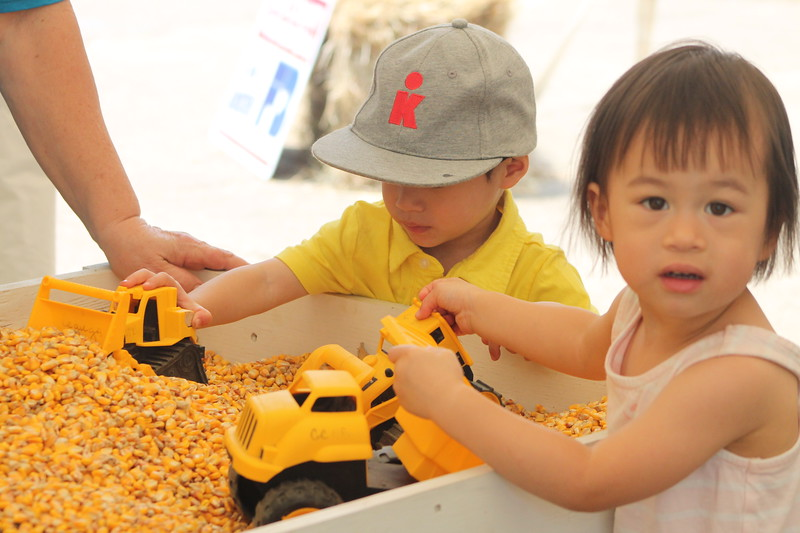 Kristi Garabrandt - The News-Herald<br /> Two-year-old twins, Aiden and Adelynn of Shaker Heights play in the corn bin at the Lake County Farm Bureau tent.