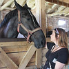Kailee Leonard - The News-Herald <br> Social Media Correspondent Harley Marsh connects with one of the many draft horses being exhibited at the Lake County Fair, July 25-30.
