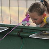 Kristi Garabrandt - The News-Herald <br /> Parker Warmington, 6, of Chardon waits to catch a fish a the Bite Fish Tanks at the Lake County Fair.