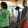 Kailee Leonard - The News-Herald <br> Alexia Zalar with Heaven Sent Alpacas talks about her alpaca to patrons at Lake County Fair.