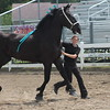 Kristi Garabrandt - The News-Herald<br /> Sydney Rider of Burton with her horse during the draft horse showmanship judging July 26 at the Lake County Fair.