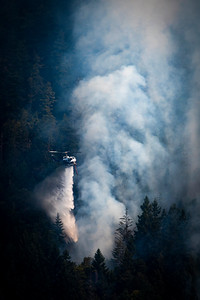 A Department of Natural Resources helicopter drops water as a wildland fire burns along East Beach Road on the northern shore of Olympic National Park's Lake Crescent on July 30, 2020. (Jesse Major)