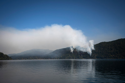 A wildland fire burns along East Beach Road on the northern shore of Olympic National Park's Lake Crescent on July 30, 2020. (Jesse Major)