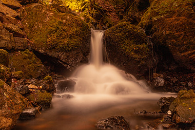 Tom Gill Falls, below Tarn Hows, Lake District.