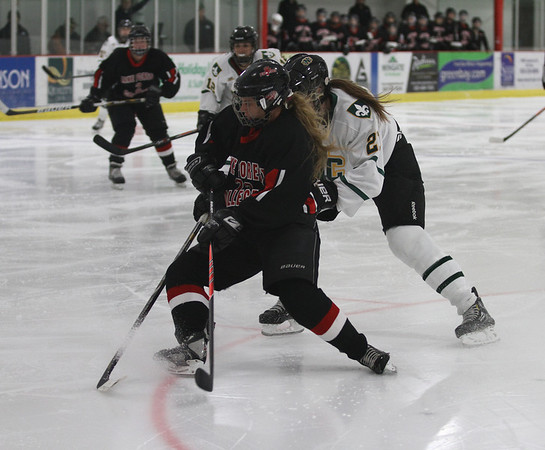 Lake Forest Women's Ice Hockey