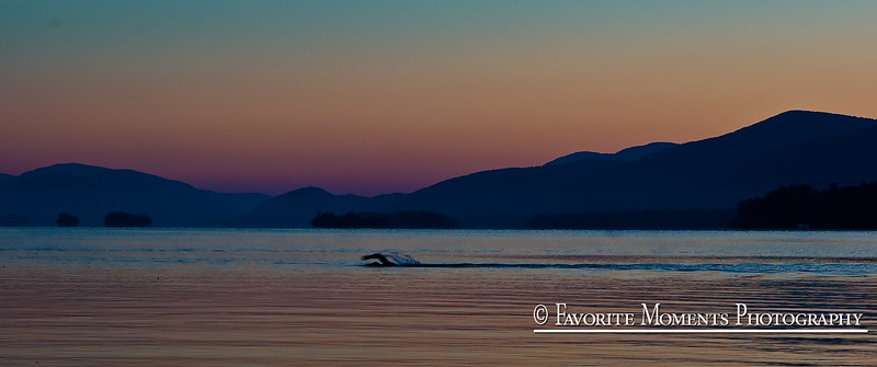 Lake George .... Swimmer doing laps before sunrise