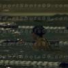 E:all-pix2010-12-21Lake Swimming-AllianceIMG_2161