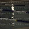 E:all-pix2010-12-21Lake Swimming-AllianceIMG_2156