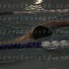 E:all-pix2010-12-21Lake Swimming-AllianceIMG_2163