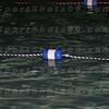 E:all-pix2010-12-21Lake Swimming-AllianceIMG_2171 (2)