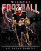 Wildcat football-2012 Domizio_35