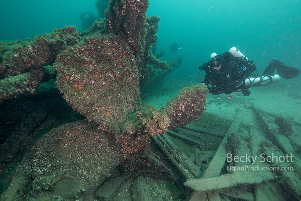 CCR dive with the props of the W.P. Thew