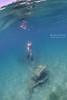 Freediving on the wreck of Monohansett