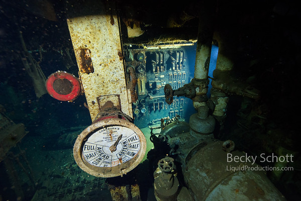 Engine room of the wreck of the  Daniel J. Morell