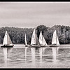 Lake Keowee Sailboat Race - January 2017 (B&W)