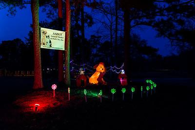Lakelife - Lakeside Park Christmas Lights