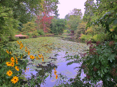 Alfred Caldwell Lily Pool