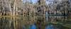 Lake Martin, La  T6i, 18-200 lens, 182A-small