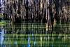 Lake Martin, La  T6i, 18-200 lens, 252A-small