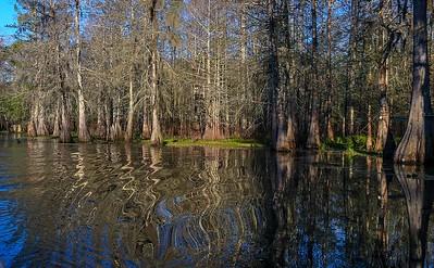 Lake Martin, La  T6i, 18-200 lens, 148B-small