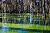 Lake Martin, La  T6i, 18-200 lens, 256B-small