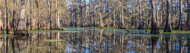 Lake Martin, La  T6i, 18-200 lens, 178A-small