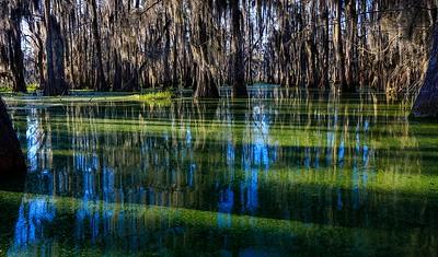 Lake Martin, La  T6i, 18-200 lens, 262C-small