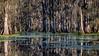 Lake Martin, La  T6i, 18-200 lens, 172A-small