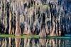 Lake Martin, La  T6i, 18-200 lens, 238A-small