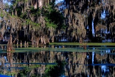 Lake Martin, La  T6i, 18-200 lens, 200A-small