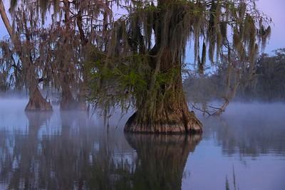 Lake Martin, La  T6i, 18-200 lens, 010A-small