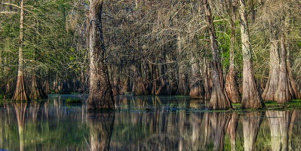 Lake Martin, La  T6i, 18-200 lens, 158A-small