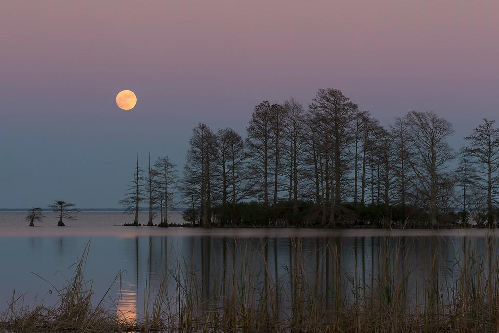 Lake Mattamuskeet Full Moon