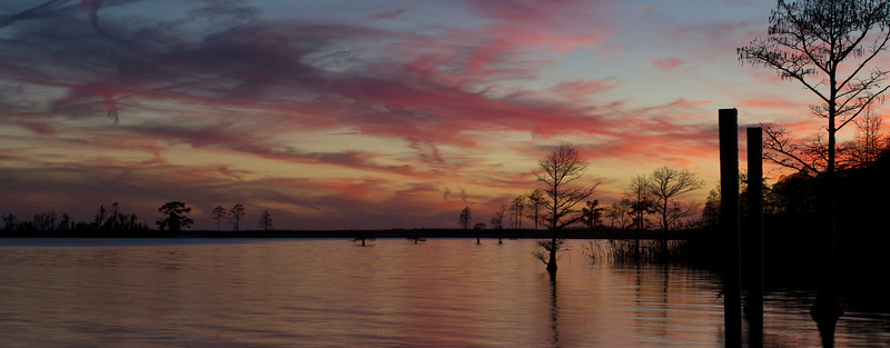 Lake Mattamuskeet Dusk Pano