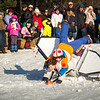 Bobsled_2016_005