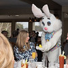 Easter_Bunny_052