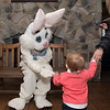 Easter_Bunny_070