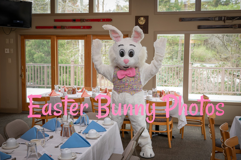 Easter_Bunny_Photos_2019_001