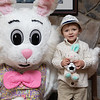Easter_Bunny_Photos_2019_016