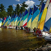 Junior_Sailing_12