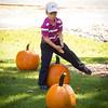 Pumpkin_MTL_013