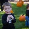 Pumpkin_MTL_001