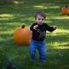Pumpkin_MTL_006