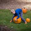 Pumpkin_MTL_007