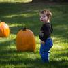 Pumpkin_MTL_005