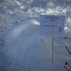 WF_Snowman_15