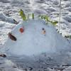WF_Snowman_14