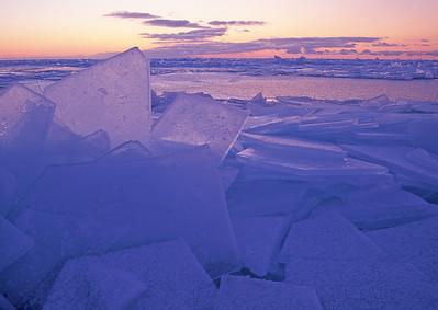 Ice Shards Gooseberry 4_PaulS