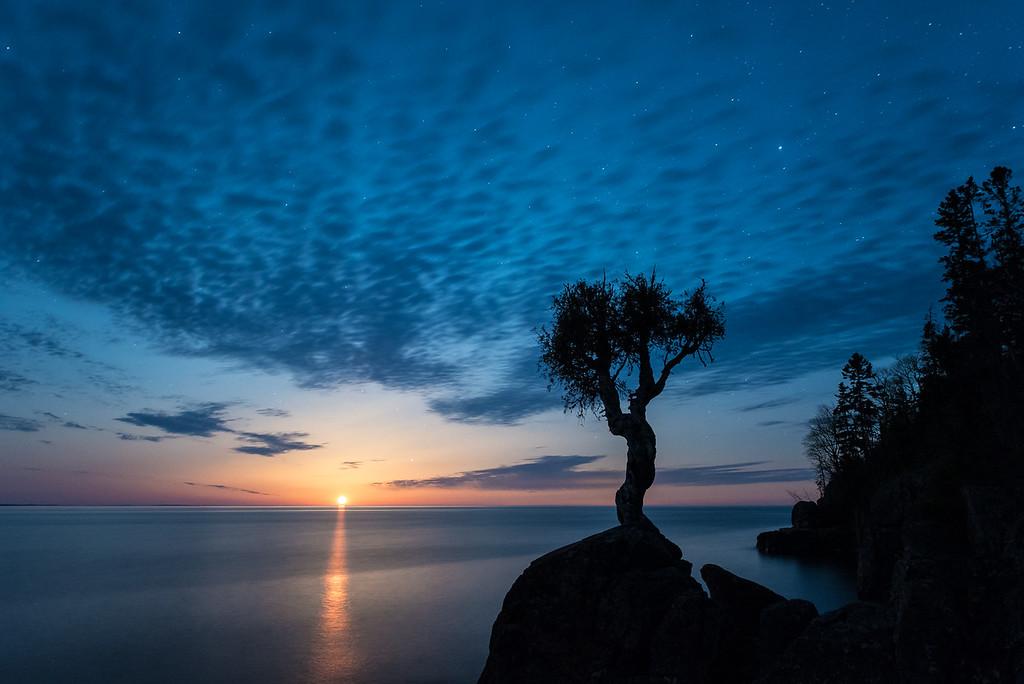 "SPIRIT TREE 4870<br /> <br /> ""Zaagibagaa Giizis - The Leaves are Budding Moon""<br /> <br /> The May full moon (Zaagibagaa Giizis in the Ojibwe language) rises over Lake Superior behind the Spirit Tree in Grand Portage, Minnesota."