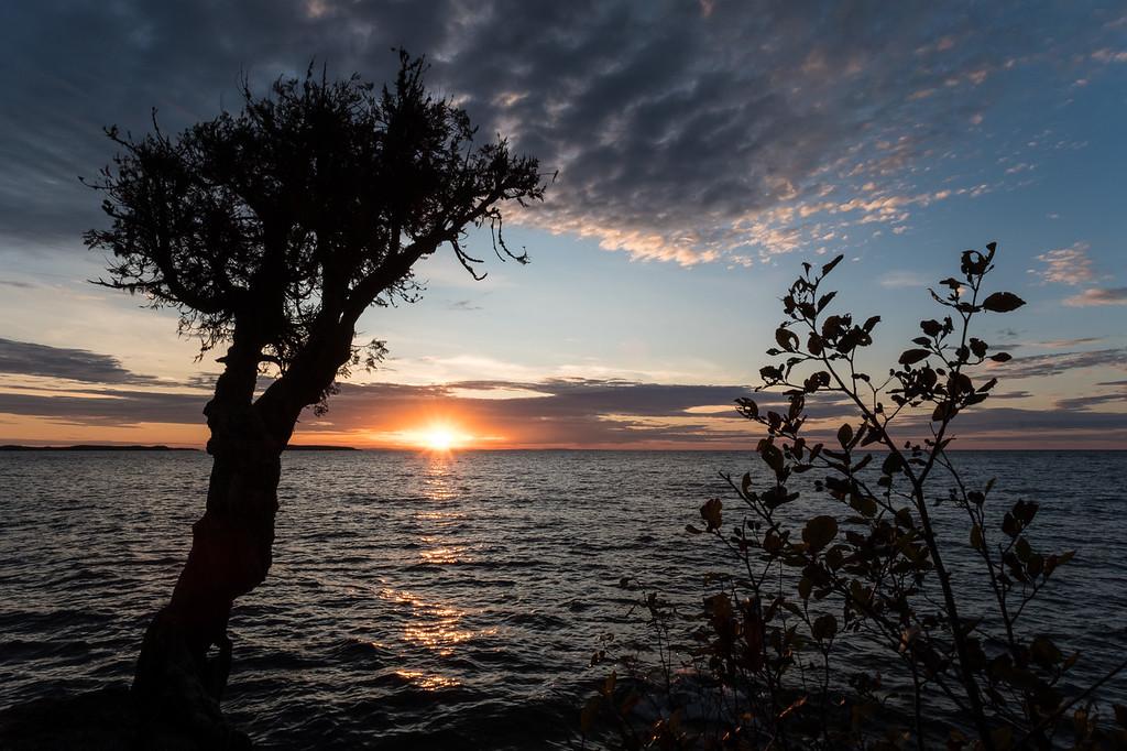 "SPIRIT TREE 0214<br /> <br /> ""October 1st Sunrise at the Spirit Tree""<br /> <br /> Grand Portage, MN"